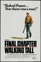 Final Chapter: Walking Tall - 27 x 40 Movie Poster - Style A