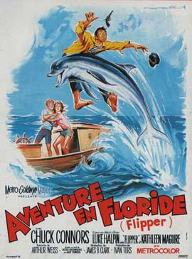 Flipper - 11 x 17 Movie Poster - French Style A