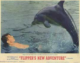 Flipper's New Adventure - 11 x 14 Movie Poster - Style B
