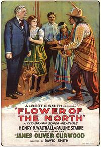 Flower of the North - 43 x 62 Movie Poster - Bus Shelter Style A