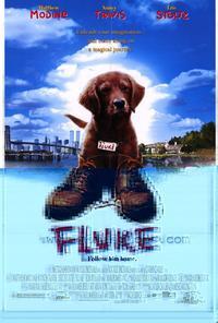Fluke - 27 x 40 Movie Poster - Style A
