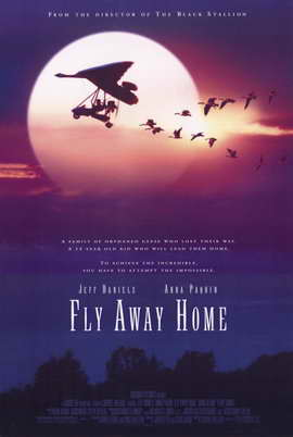 Fly Away Home - 11 x 17 Movie Poster - Style B