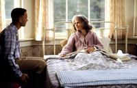 Forrest Gump - 8 x 10 Color Photo #2