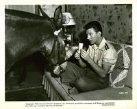 Francis Covers the Big Town - 8 x 10 B&W Photo #2