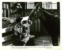 Francis Covers the Big Town - 8 x 10 B&W Photo #3