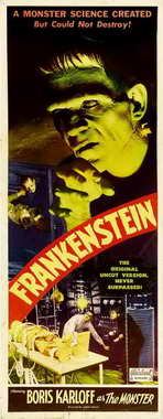 Frankenstein - 14 x 36 Movie Poster - Insert Style A