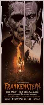 Frankenstein - 14 x 36 Movie Poster - Insert Style B