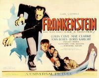 Frankenstein - 11 x 14 Movie Poster - Style A
