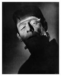 Frankenstein - 8 x 10 B&W Photo #1