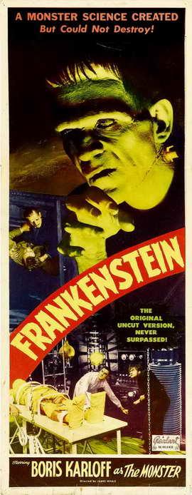 Frankenstein - 14 x 36 Movie Poster - Insert Style A
