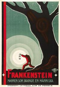 Frankenstein - 27 x 40 Movie Poster - Swedish Style A
