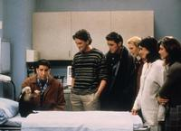 Friends (TV) - 8 x 10 Color Photo #019