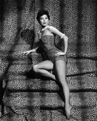Ava Gardner - 8 x 10 B&W Photo #1