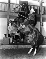 Gene Autry - Gene Autry Riding a Horse in Cowboy Attire