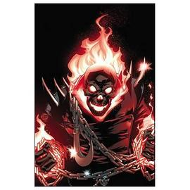 Ghost Rider - Complete Series by Rob Williams Graphic Novel