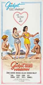 Gidget Goes Hawaiian - 20 x 40 Movie Poster - Style A