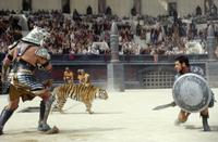 Gladiator - 8 x 10 Color Photo #19