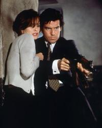 Goldeneye - 8 x 10 Color Photo #12