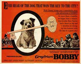 Greyfriars Bobby - 11 x 14 Movie Poster - Style A
