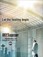 Grey's Anatomy - 11 x 17 TV Poster - Style I