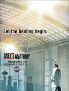 Grey's Anatomy - 11 x 17 TV Poster - Style I