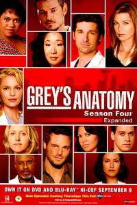 Grey's Anatomy - 43 x 62 Movie Poster - Bus Shelter Style B