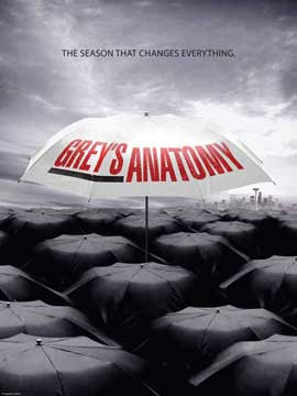 Grey's Anatomy - 11 x 17 TV Poster - Style F