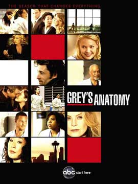 Grey's Anatomy - 11 x 17 TV Poster - Style H