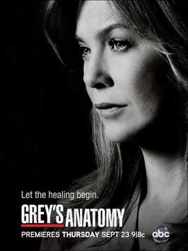 Grey's Anatomy - 11 x 17 TV Poster - Style J