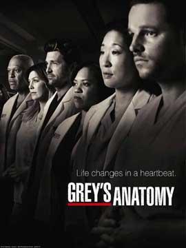 Grey's Anatomy - 11 x 17 TV Poster - Style K