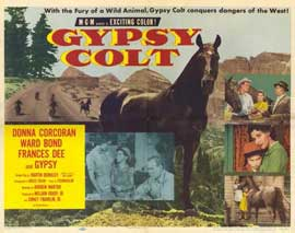 Gypsy Colt - 11 x 14 Movie Poster - Style A