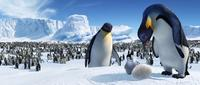 Happy Feet - 8 x 10 Color Photo #3
