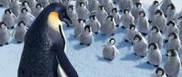 Happy Feet - 8 x 10 Color Photo #6