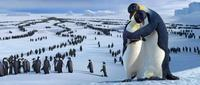 Happy Feet - 8 x 10 Color Photo #10