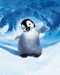 Happy Feet - 8 x 10 Color Photo #29
