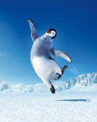 Happy Feet - 8 x 10 Color Photo #32