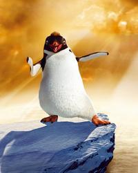 Happy Feet - 8 x 10 Color Photo #33