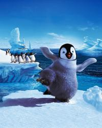 Happy Feet - 8 x 10 Color Photo #34