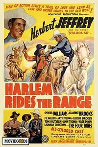 Harlem Rides the Range - 43 x 62 Movie Poster - Bus Shelter Style A