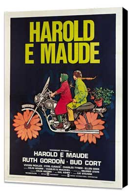 Harold and Maude - 27 x 40 Movie Poster - Italian Style A - Museum Wrapped Canvas