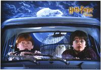 Harry Potter and the Chamber of Secrets - 43 x 62 Movie Poster - Bus Shelter Style B