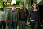 Harry Potter and the Deathly Hallows: Part I - 8 x 10 Color Photo #4