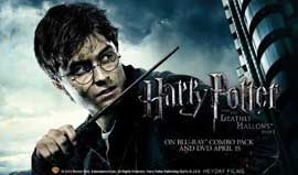 Harry Potter and the Deathly Hallows: Part I - 11 x 17 Poster - Style AL