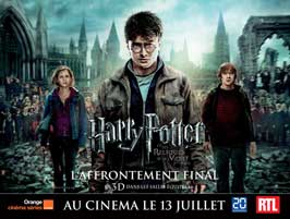 Harry Potter and the Deathly Hallows: Part II - 43 x 62 Movie Poster - French Style D