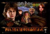 Harry Potter and the Goblet of Fire - 11 x 17 Movie Poster - Style D