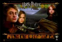 Harry Potter and the Goblet of Fire - 11 x 17 Movie Poster - Style F