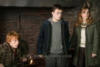 Harry Potter and the Order of the Phoenix - 8 x 10 Color Photo #5