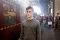 Harry Potter and the Order of the Phoenix - 8 x 10 Color Photo #35