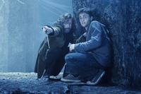 Harry Potter and the Order of the Phoenix - 8 x 10 Color Photo #42