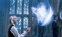 Harry Potter and the Order of the Phoenix - 8 x 10 Color Photo #49